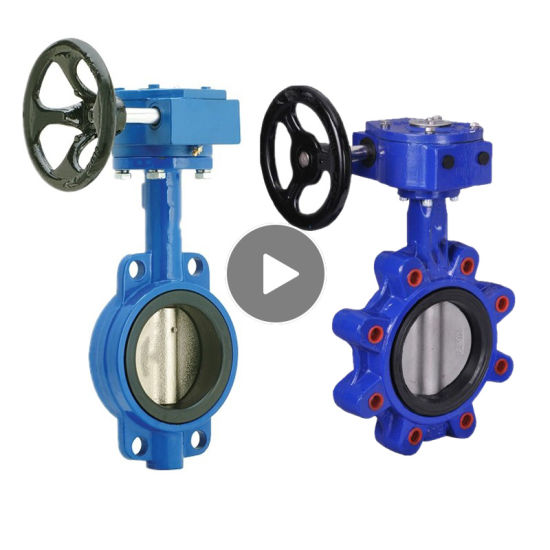 Worm Gear Butterfly Valve with Pin Pn16 JIS10k
