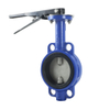 Hot Sale SS304 Manual Centerline Ductile Iron Pressure Reducing Dn 500 Butterfly Valve