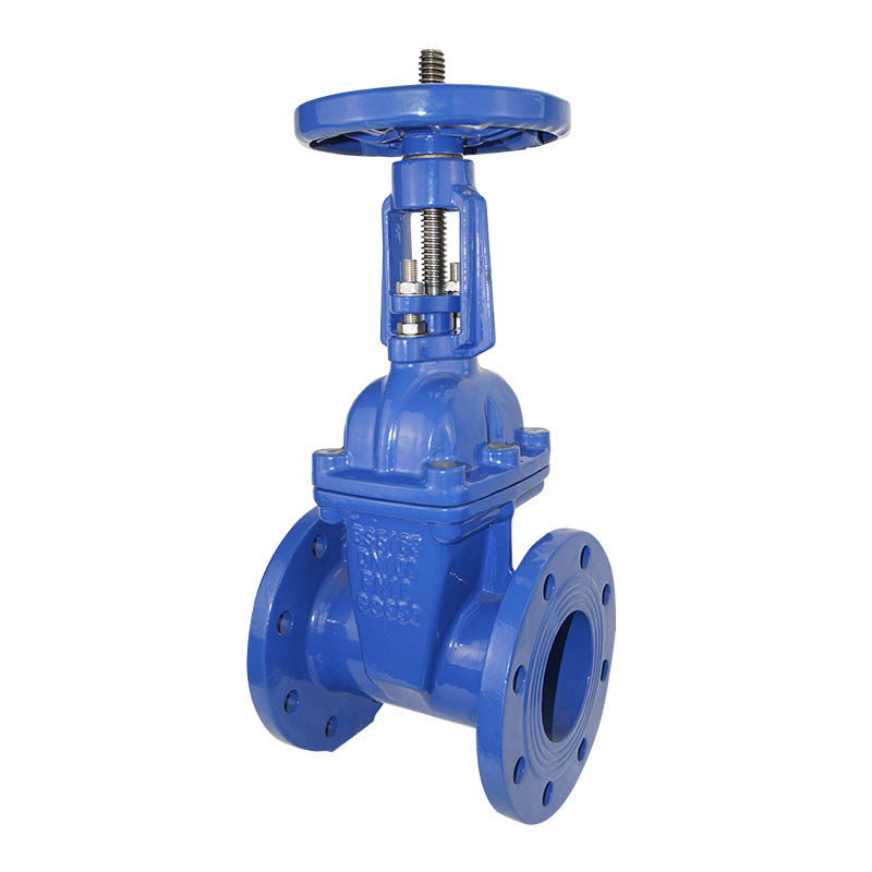 Rising Stem Solid Wedge Gate Valve